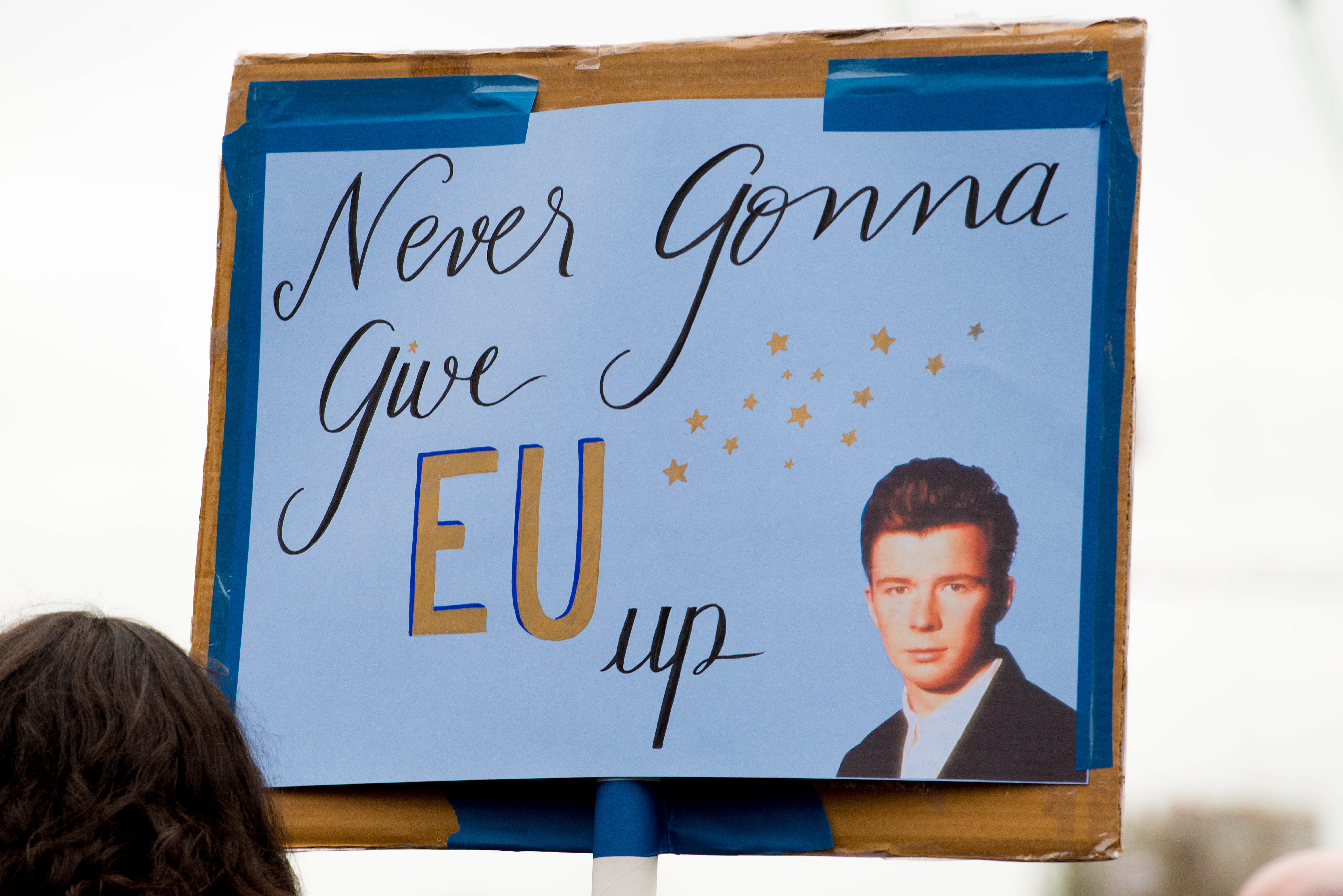 Rick Astley banner - Never Gonna Give EU Up